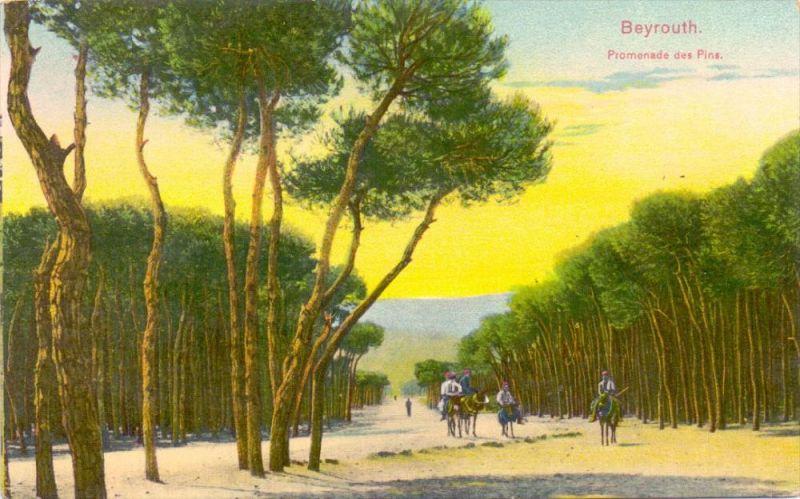 LIBANON - BEYROUTH, Promenade de Pins, 1918