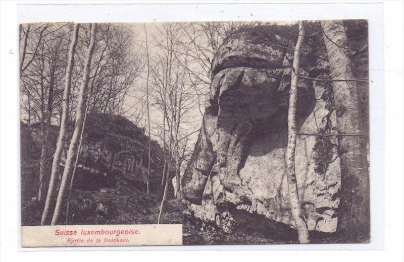 L 6400 ECHTERNACH, Luxemburger Schweiz, Partie an der Goldkaul, 1907, Bernhoeft-Lux.