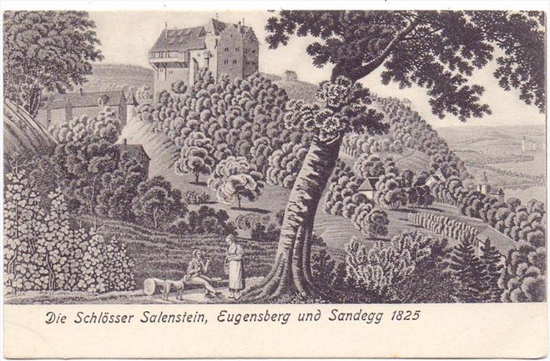 CH 8268 SALENSTEIN, Schlösser Salenstein, Eugensberg und Sandegg, Künstler-Karte