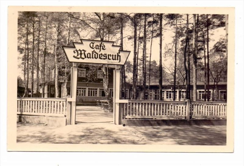 0-8000 DRESDEN - HEIDE, Cafe Waldesruh, 1958, rücks. Klebereste