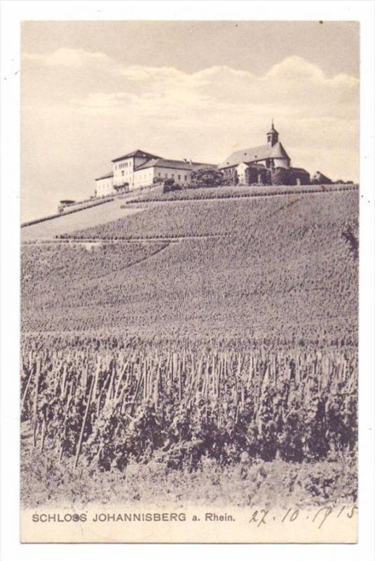 6222 GEISENHEIM - JOHANNISBERG, Schloß Johannisberg, Weinberg, 1915