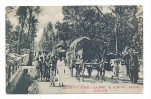 SRI LANKA / CEYLON - Colpetty Road, leading to Mount Lavinia, 1906