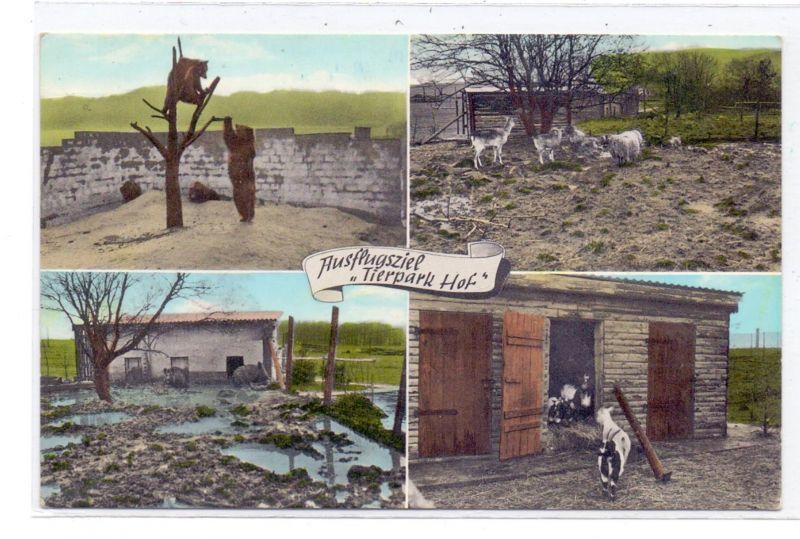 5439 BAD MARIENBERG - HOF, Tierpark Hof, Bären, Wildschweine, Ziegen, Schafe... 0