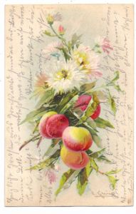 KÜNSTLER / ARTIST - CATHARINA KLEIN, Nelken und Pfirsiche, 1906