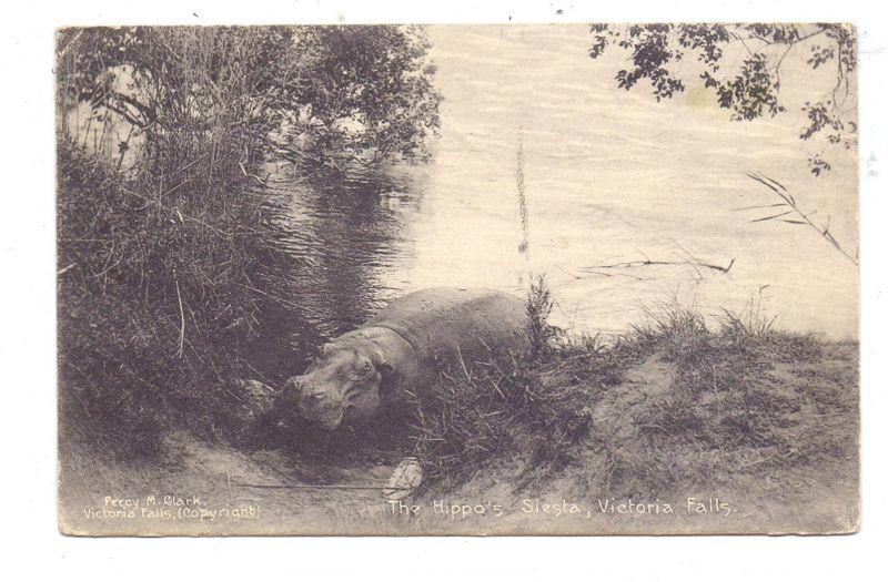 ZIMBABWE - VICTORIA FALLS, Hippo Siesta, postally RETURNED, 1925