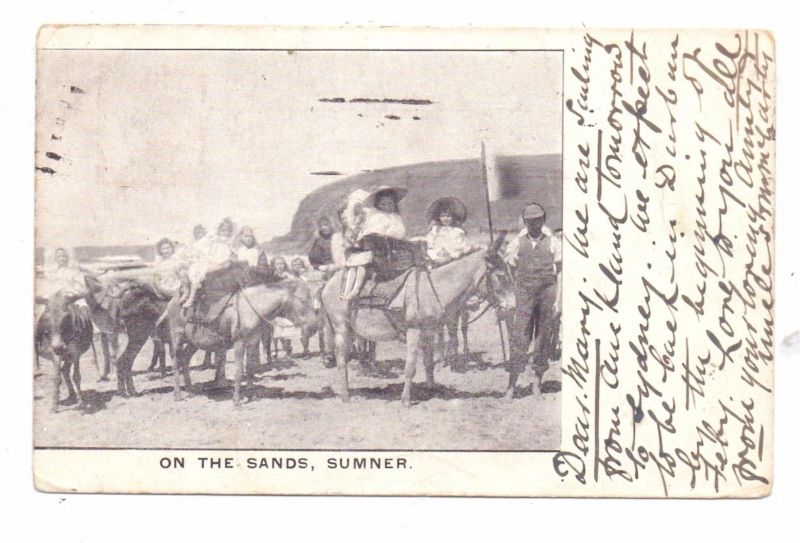 NEW ZEALAND - On the Sands, Summer, Children and Donkeys, 1906