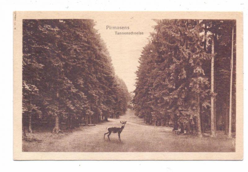 6780 PIRMASENS, Tannenschneise, Rehbock