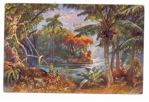 CAMEROUN / CAMEROON / KAMERUN - german colony, Landscape in Cameroon, 1915