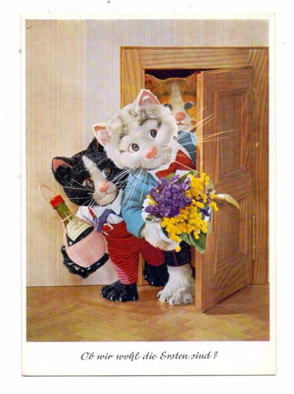 KATZEN / Cats / Chats / Katten / Gatti / Gatos -