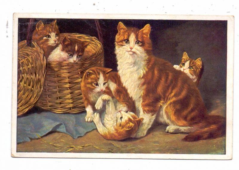 KATZEN / Cats / Chats / Katten / Gatti / Gatos - Künstler-Karte, 1929
