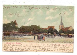 OSTPREUSSEN - LABIAU / POLESSK, Gruss aus..., Pferdefuhrwerke, 1904, handcoloriert