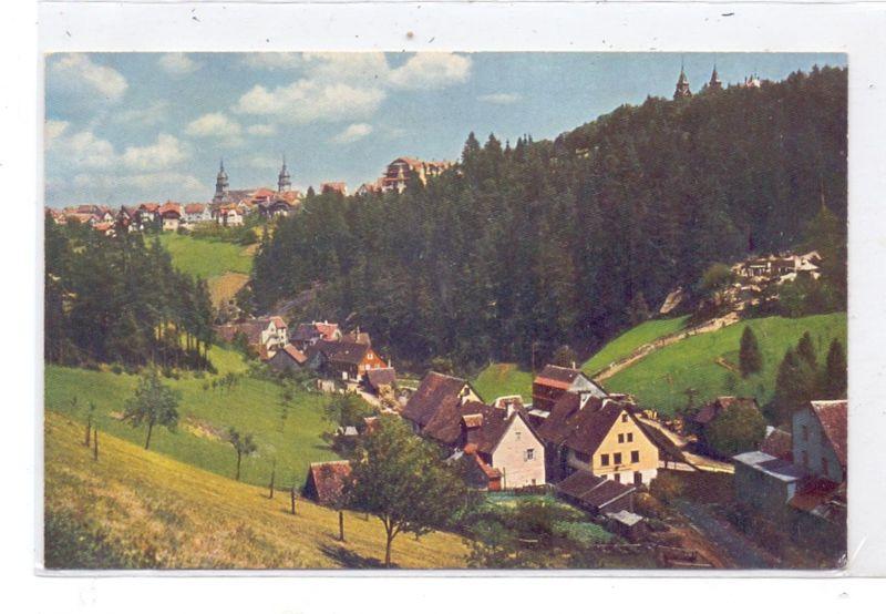 NIEDER - SCHLESIEN - HALBAU / ILOWA, Kreis Sagan, Lithographie 1899, Gasthaus, Bahnhof, Post, Kirche, Schloss