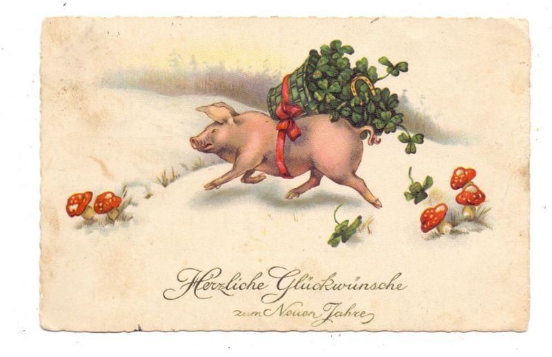 SCHWEINE - Pigs / Porcs / Maiali / Varkens / Cerdos - Glücksschwein mit Kleeblättern und Glückspilzen, 1925