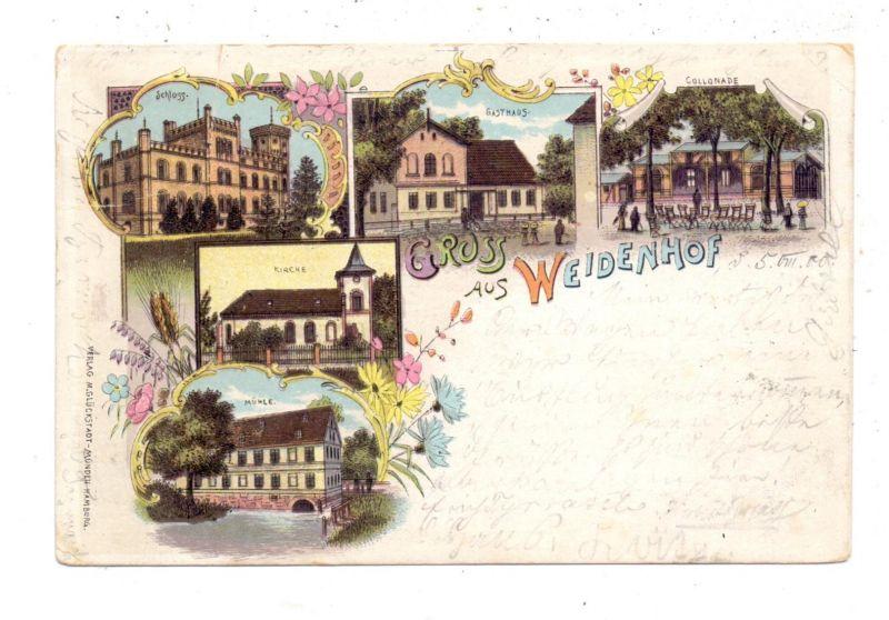 NIEDER-SCHLESIEN - WEIDENHOF / SWINIARY, Lithographie 1900, Mühle, Schloss, Gasthaus, Kirche, Collonade, kl.Druckstellen