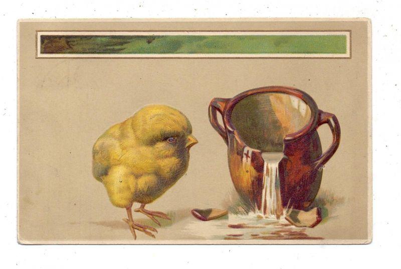OSTERN - Küken mit zerbrochenem Wasserkrug, Präge-Karte, embossed, relief, 1912