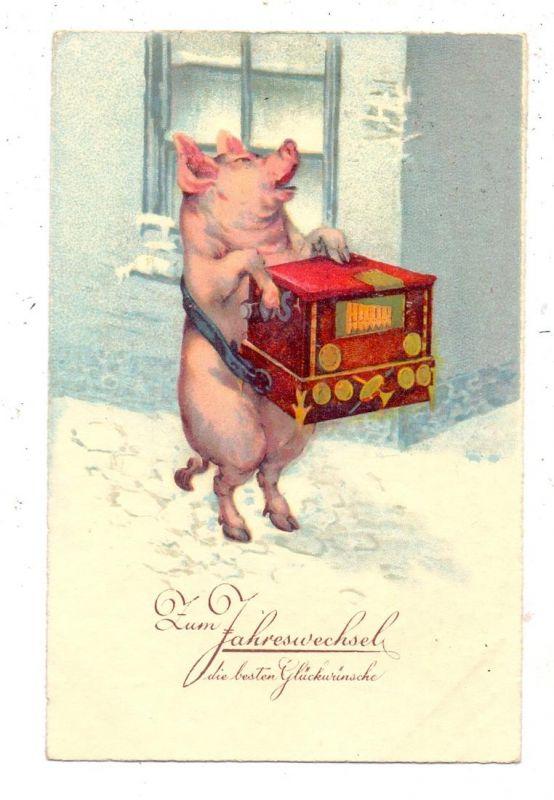 SCHWEINE / Pics / Porcs / Varkens / Maiali / Cerdos, Schwein mit Drehorgel