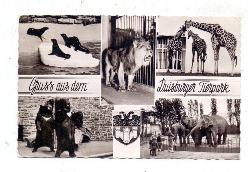 4100 DUISBURG, Zoo, Mehrbild-Karte 1963 0