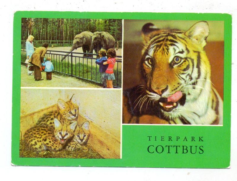 0-7500 COTTBUS, Zoo, Tierpark 0