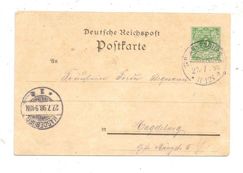 0-6820 RUDOLSTADT, Lithographie 1898, 4 Ansichten 1