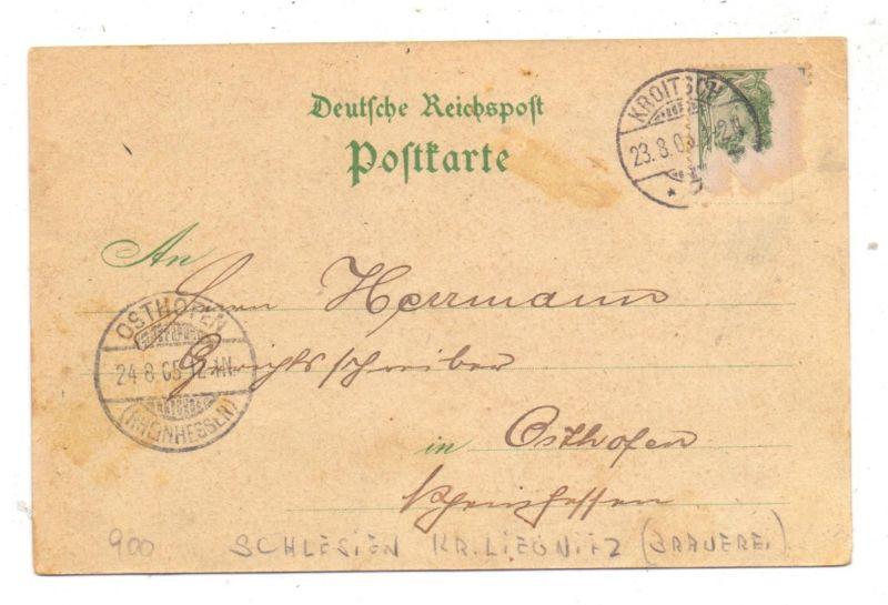 NIEDER - SCHLESIEN - KROITSCH / KROTOSZYCE, Lithographie, Brauerei, Walzenmühle, Apotheke, Waarenhandlung, Kirche 1