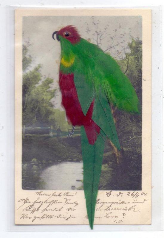 MATERIAL-AK - FEDERN, Vogel aus Echtfedern, 1904, sehr gute Erhaltung 0