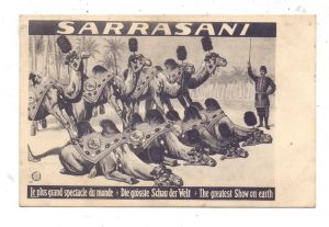 CIRCUS / ZIRKUS - SARRASANI, Die größte Schau der Welt, Dromedare
