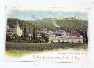0-3603 DINGELSTEDT - HUY, Roederhof mit Huysburg, ca. 1900