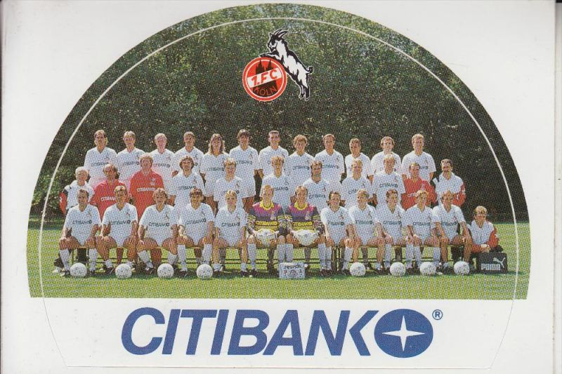 SPORT - FUSSBALL - 1.FC KÖLN - Mannschaftsbild