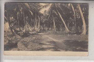 HONDURAS - LA CEIBA, Photo-AK, 1913