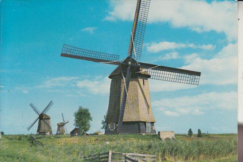 WINDMÜHLE / Mill / Molen / Moulin - SCHERMERHORN / NH