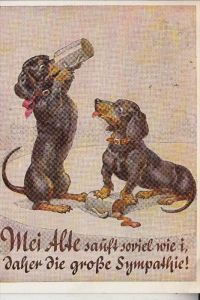 HUNDE - DACKEL / Teckel / Dachshund / Bassotto - Humor Bier