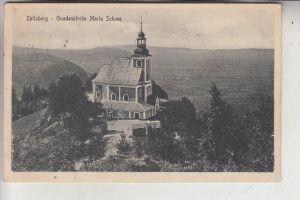 SCHLESIEN - NIEDERSCHLESIEN - WÖFELSGRUND / MIEDZYGORZE, Gnadenkirche Maria Schnee, 1916