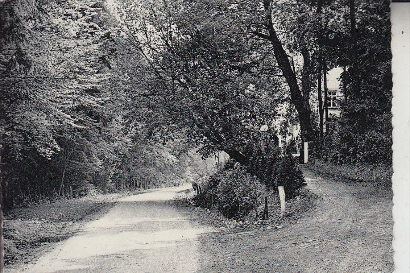 B 6920 WELLIN, Route de Daverdisse
