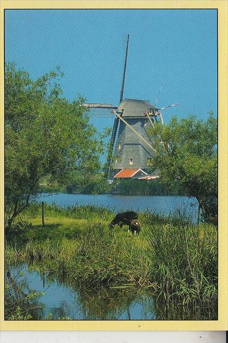 MÜHLE - WINDMÜHLE / Molen / Mill / Moulin - KINDERDIJK