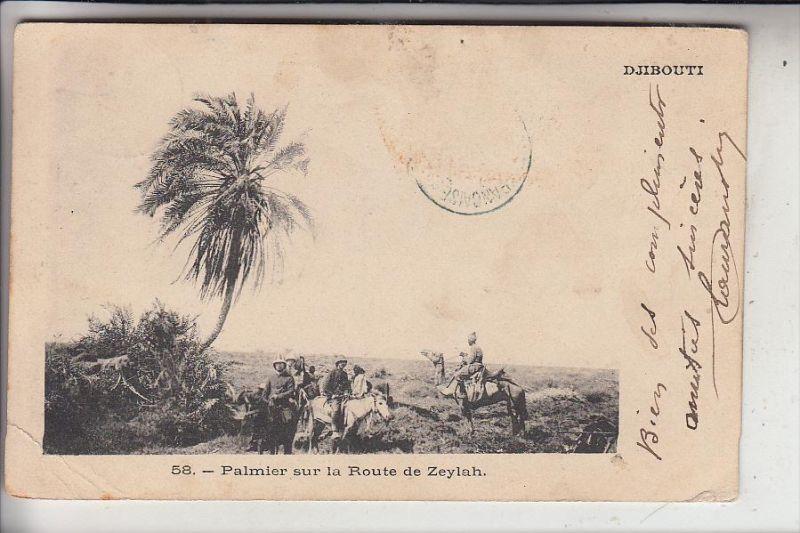 DSCHIBUTI / DJIBOUTI, Palmier sur la Route de Zeylah, 1903