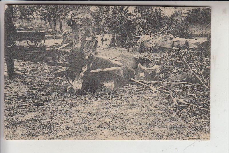 MILITÄR, 1.Weltkrieg, Artillerie, Rohrkrepierer eines 21cm Mörsers