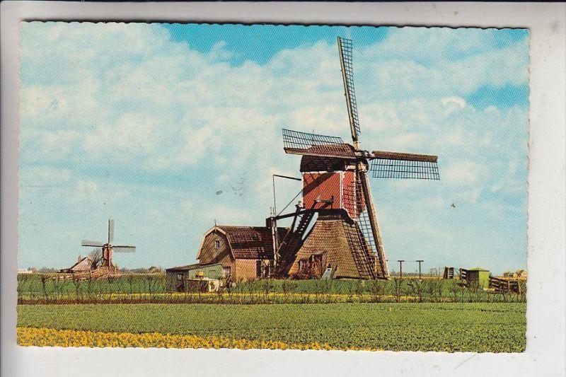 MÜHLE - WINDMÜHLE / Molen / Mill / Moulin - Hollandsche Molen