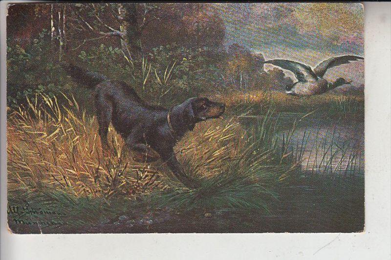 JAGD / Hunting / Chasse / Caccia / Jacht / Caza / Lowiectwo - Jagdhund Ente, Künstler-Karte Schönien-München, 1913
