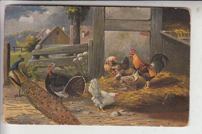 LANDWIRTSCHAFT - Geflügel / Poultry / Oiseaux / Pollo / Gevogelte / Aves - Künstler-Karte