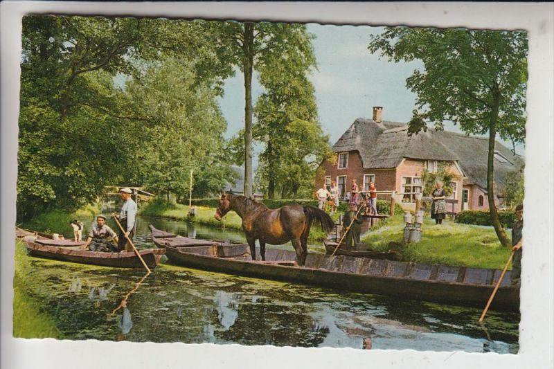 LANDWIRTSCHAFT - Pferdetransport per Boot, Giethoorn / NL, 1965