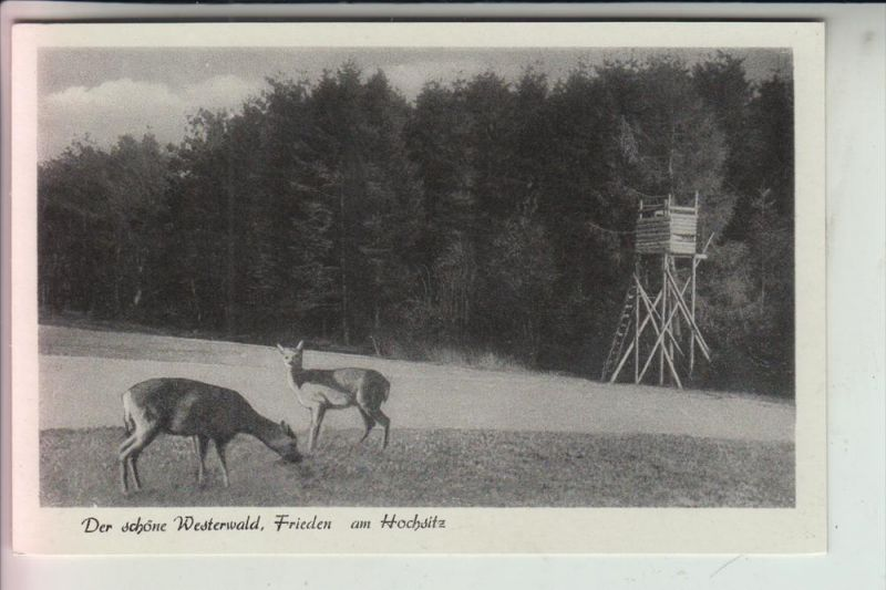 JAGD - Hunting - Jacht - Chasse - Caccia - Caza - Lowiectwo / Hochsitz Westerwald