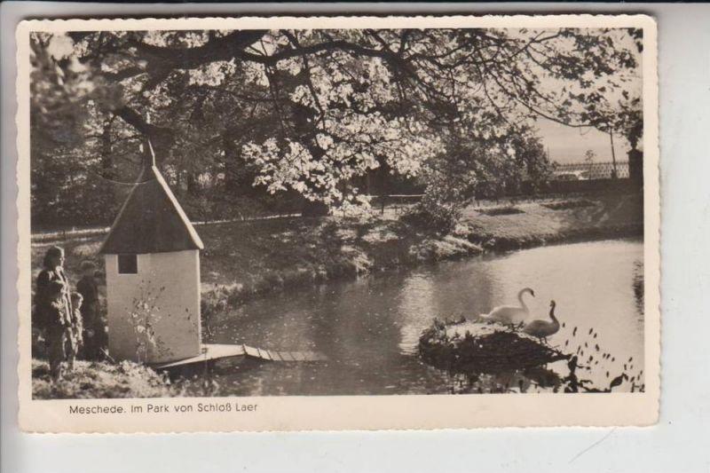 5778 MESCHEDE, Schloss Laer, Park 1954 0