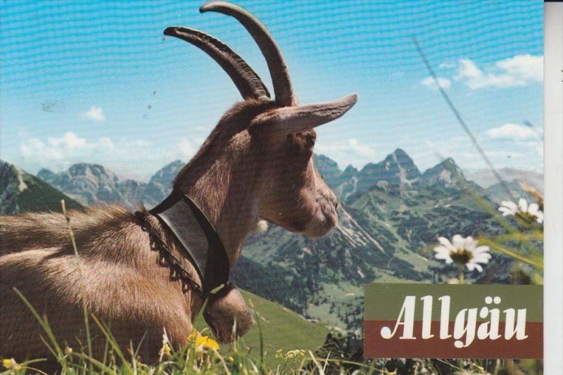 TIERE - ZIEGEN - Goats - Geiten - Chevres 0