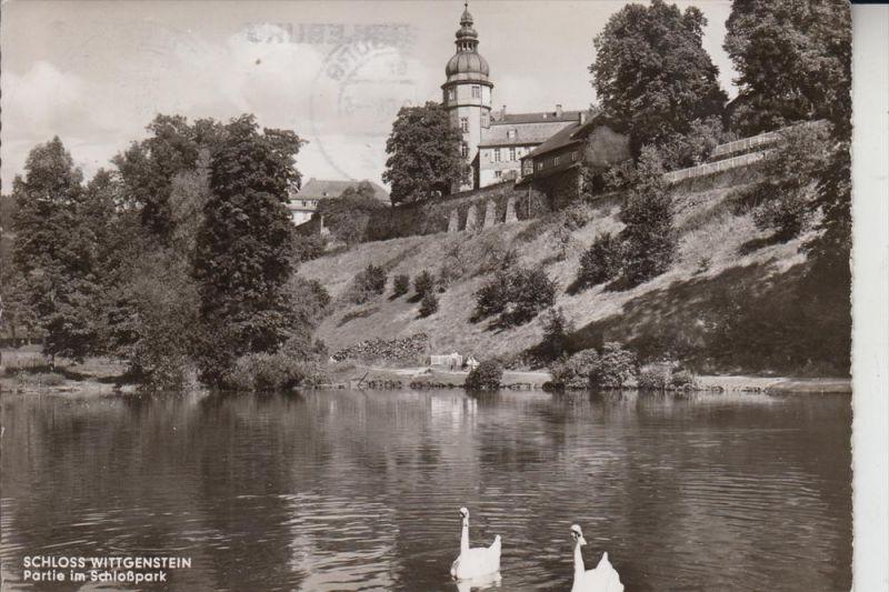 5920 BAD BERLEBURG, Schloss Wittgenstein, Schloßpark 1964 0