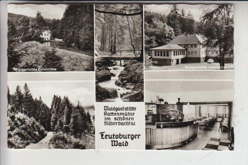 4934 HORN - BAD MEINBERG - FELDROM, Waldgaststätte Kattenmühle 0