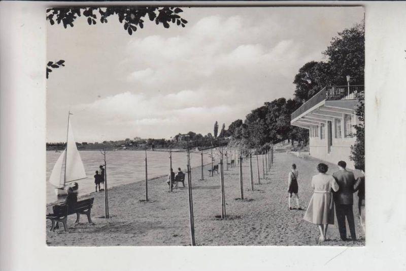 5000 KÖLN - PORZ, Archiv-Beleg Wagenhut/Porz