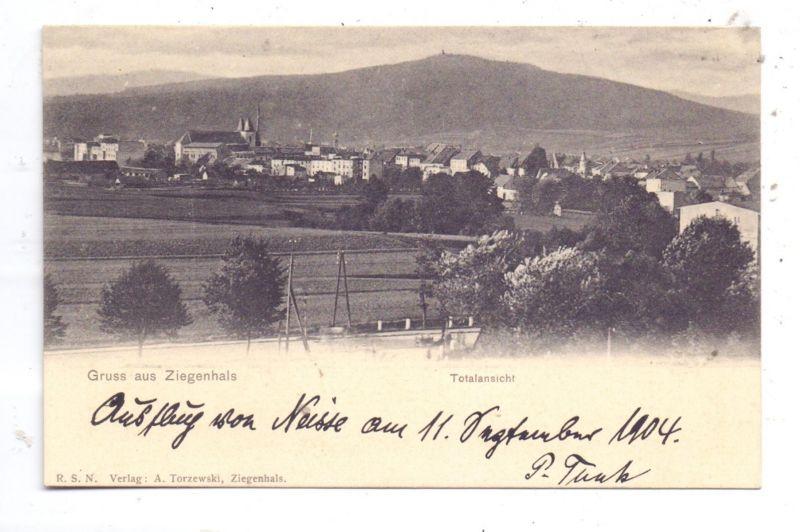 OBER-SCHLESIEN - BAD ZIEGENHALS / GLUCHOLAZY, Gruss aus..., Totalansicht, 1904