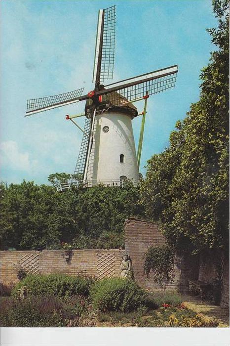 MÜHLE - Molen - mill, Windmühle Rhenen Panoramamolen