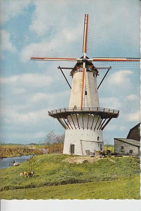 MÜHLE - Molen - mill, Windmühle Enspeyk/Gld. Korenmolen