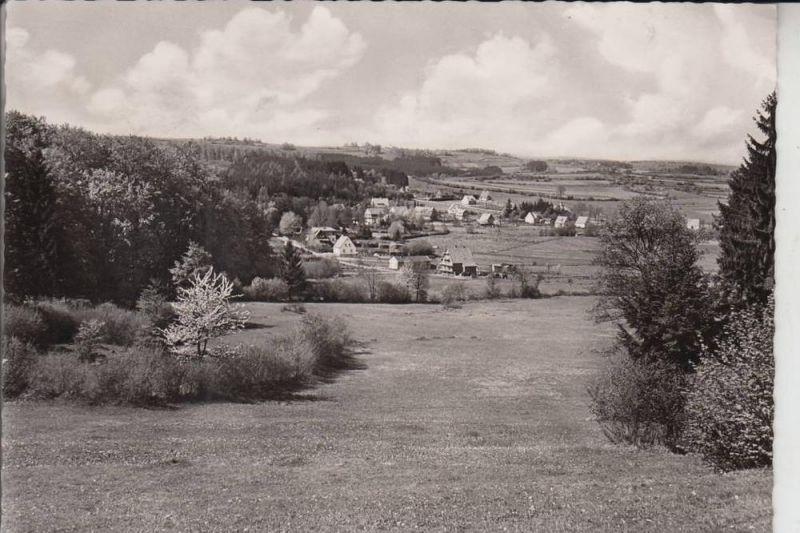 6424 GREBENHAIN - HOCHWALDHAUSEN, Ortsansicht 1955